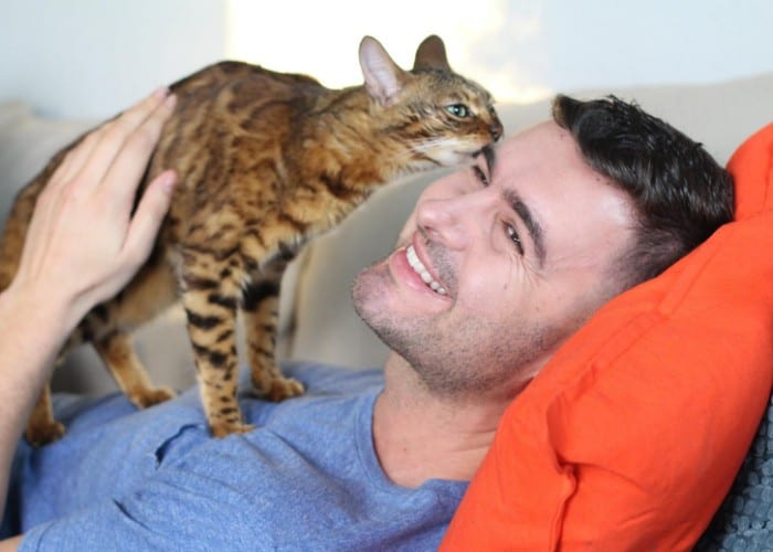 happy cat getting on owner's face