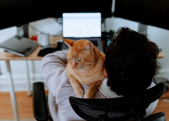 man holding a cat while on his computer